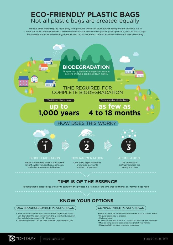 TC Eco Friendly Infographic