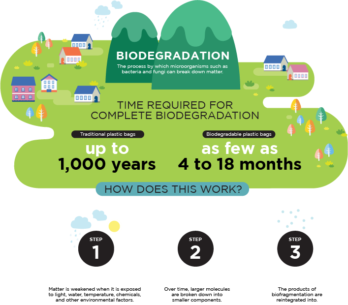 biodegradation infographic