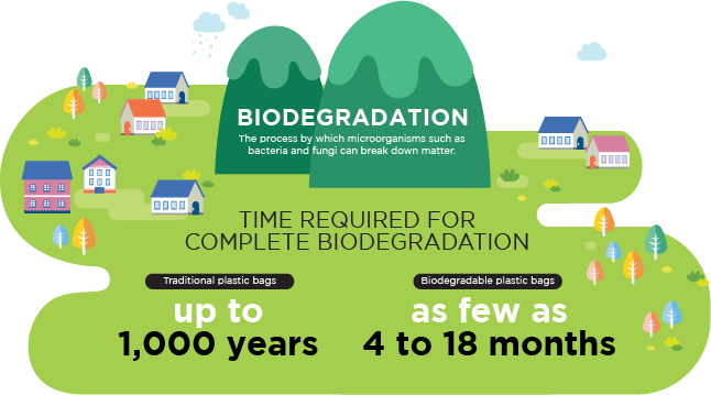 Time required for complete biodegradation infographic